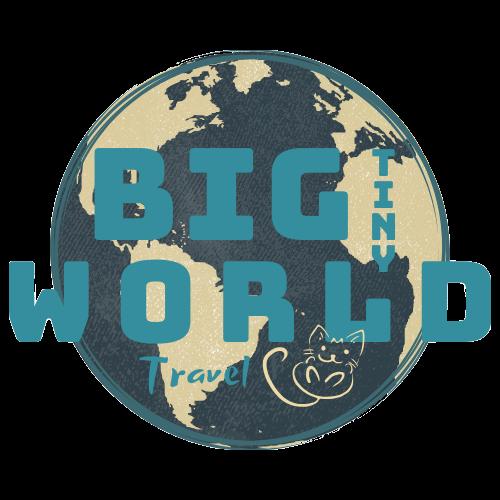 BIG tiny World Travel logo